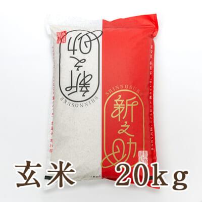 新潟産 新之助 玄米20kg