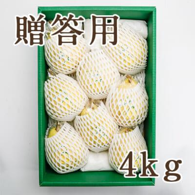 【贈答用】「天果糖逸」ル レクチエ 4kg
