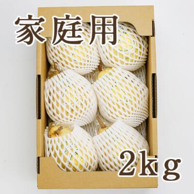 【家庭用】「天果糖逸」ル レクチエ 2kg