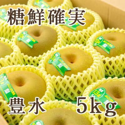 「天果糖逸」新潟県産 梨 豊水 糖鮮確実 5kg