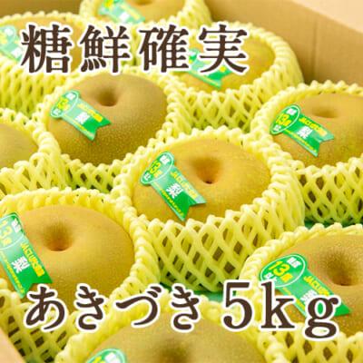 「天果糖逸」新潟県産 梨 あきづき 糖鮮確実 5kg