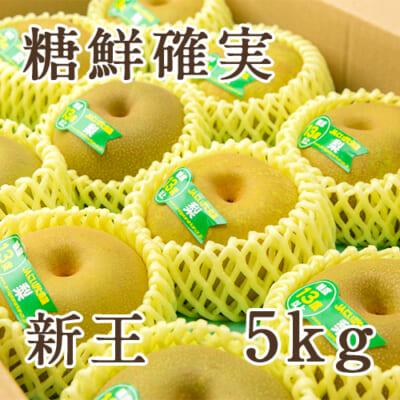 「天果糖逸」新潟県産 梨 新王 糖鮮確実 5kg