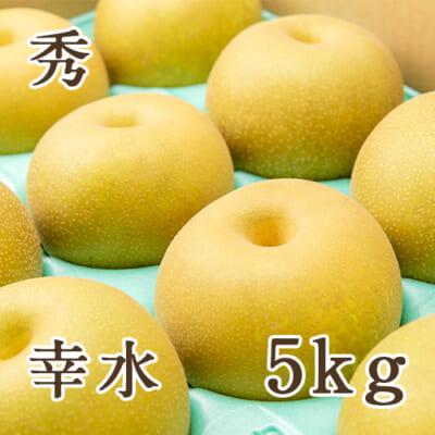 「天果糖逸」新潟県産 梨 幸水 秀 5kg