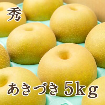 「天果糖逸」新潟県産 梨 あきづき 秀 5kg