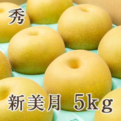 「天果糖逸」新潟県産 梨 新美月 秀 5kg