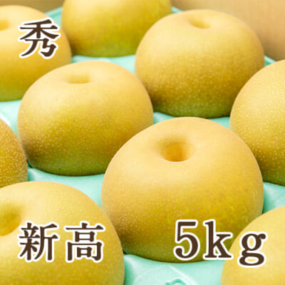 「天果糖逸」新潟県産 梨 新高 秀 5kg