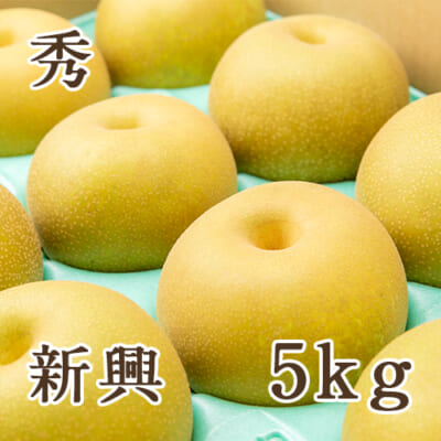 「天果糖逸」新潟県産 梨 新興 秀 5kg