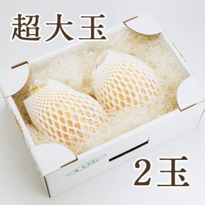 【贈答用 超大玉】ル・レクチェ 2玉