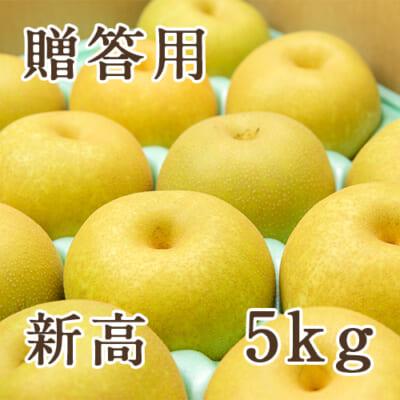 【贈答用】新高 5kg