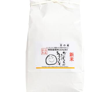 令和2年度米 新潟県産コシヒカリ(特別栽培・従来品種)