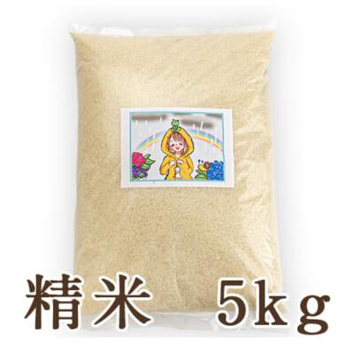 新潟県産にじのきらめき 精米5kg