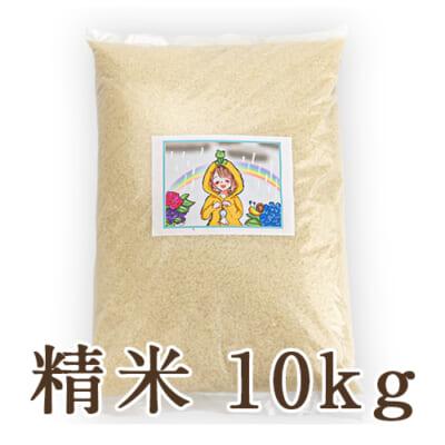 新潟県産にじのきらめき 精米10kg