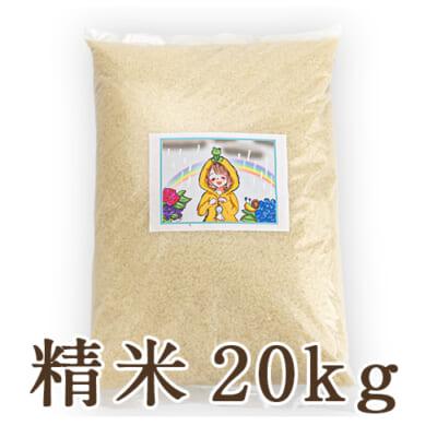 新潟県産にじのきらめき 精米20kg