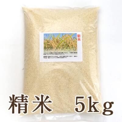 新潟県産ヒカリ新世紀 精米5kg