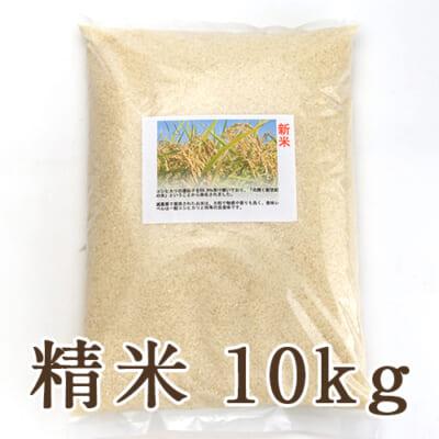 新潟県産ヒカリ新世紀 精米10kg