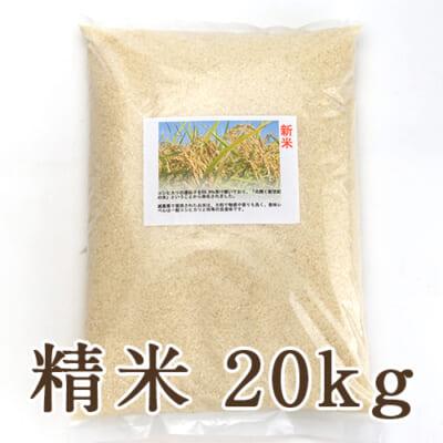 新潟県産ヒカリ新世紀 精米20kg