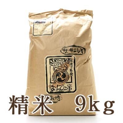 佐渡産 自然栽培米ササニシキ 精米9kg