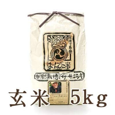 佐渡産 自然栽培米ササニシキ 玄米5kg