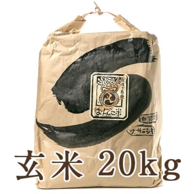 佐渡産 自然栽培米ササニシキ 玄米20kg