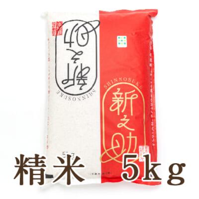 新潟産 新之助 精米5kg