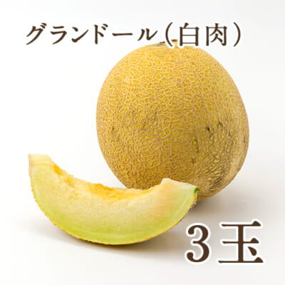 新潟県産メロン グランドール(白肉)3玉