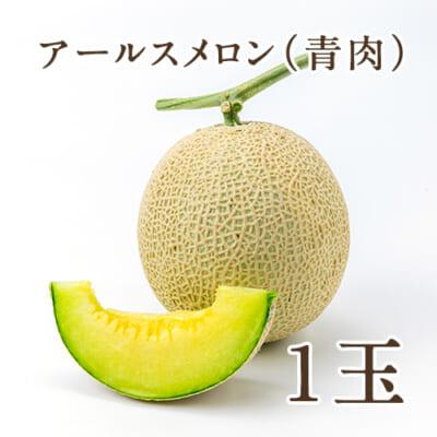 新潟県産メロン アールスメロン(青肉)1玉