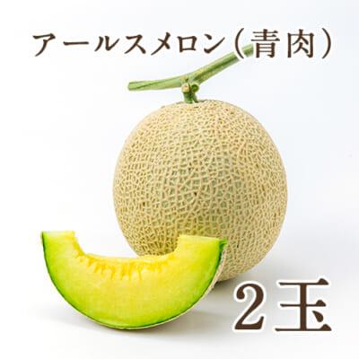 新潟県産メロン アールスメロン(青肉)2玉