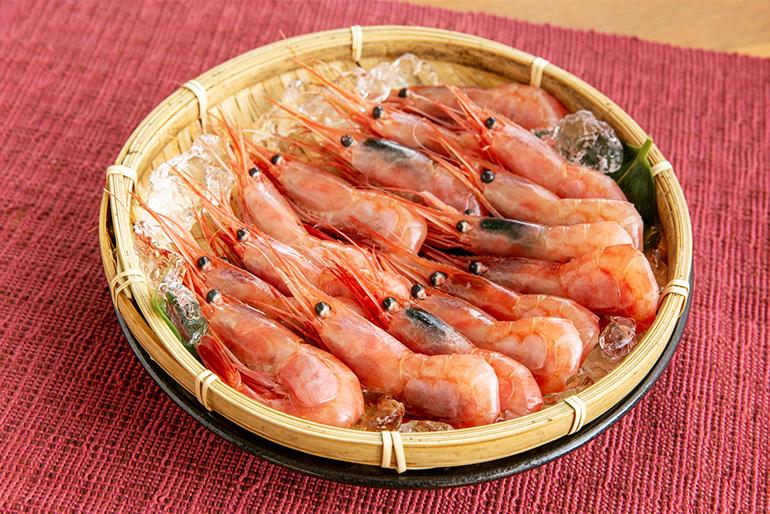 新鮮な南蛮エビを水揚げできる、糸魚川の漁場