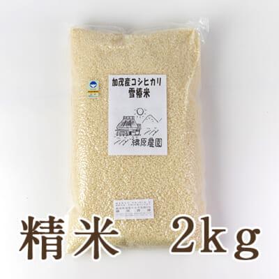 新潟産コシヒカリ「雪椿米」(特別栽培・従来品種)精米2kg