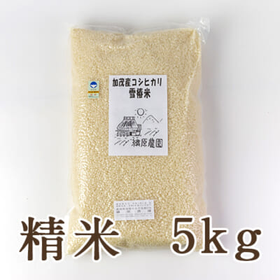 新潟産コシヒカリ「雪椿米」(特別栽培・従来品種)精米5kg