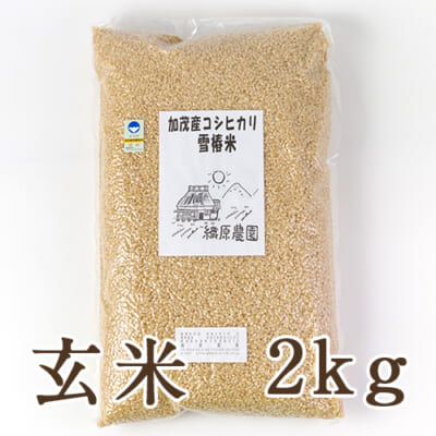 新潟産コシヒカリ「雪椿米」(特別栽培・従来品種)玄米2kg