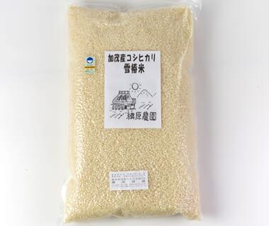令和2年度米 新潟産コシヒカリ「雪椿米」(特別栽培・従来品種)