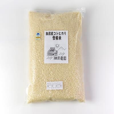 令和3年度米 新潟産コシヒカリ「雪椿米」(特別栽培・従来品種)