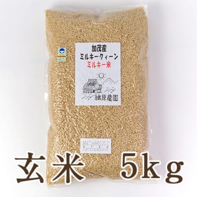 新潟産ミルキークイーン(特別栽培)玄米5kg