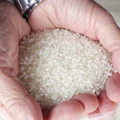 食の安全にこだわった、特別栽培米