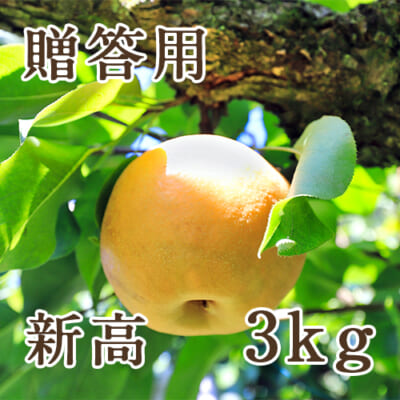 【贈答用】新高 3kg