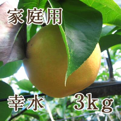 【家庭用】幸水 3kg