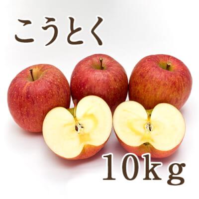 佐渡産りんご こうとく 10kg