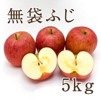 佐渡産りんご サンふじ 5kg