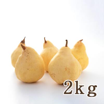 佐渡産ル・レクチェ 2kg