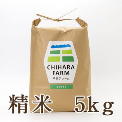 新潟県産コシヒカリ 精米5kg