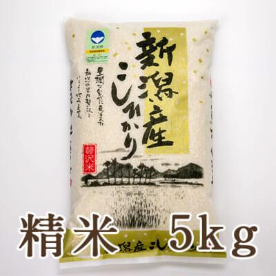 新潟産 特別栽培米コシヒカリ「狐島米」精米5kg