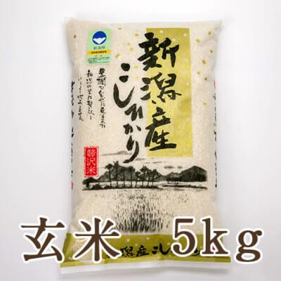 新潟産 特別栽培米コシヒカリ「狐島米」玄米5kg