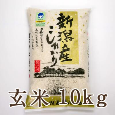 新潟産 特別栽培米コシヒカリ「狐島米」玄米10kg