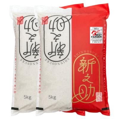 新潟産新之助 精米10kg