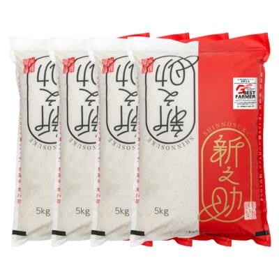新潟産新之助 無洗米20kg