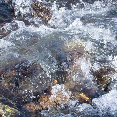 すっきりとした味わいを生む澄んだ水