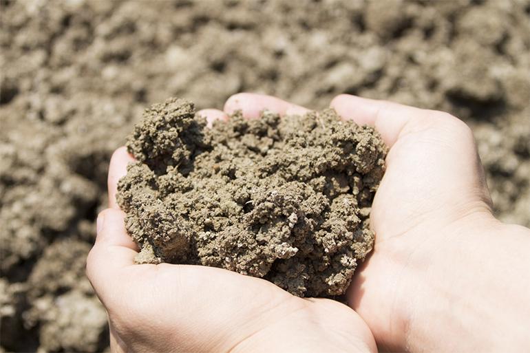 環境にも人にも優しい農業