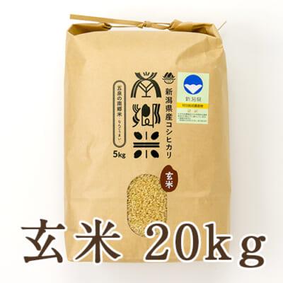 新潟県産コシヒカリ「南郷米」玄米20kg