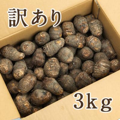 【訳あり】五泉産 里芋 3kg